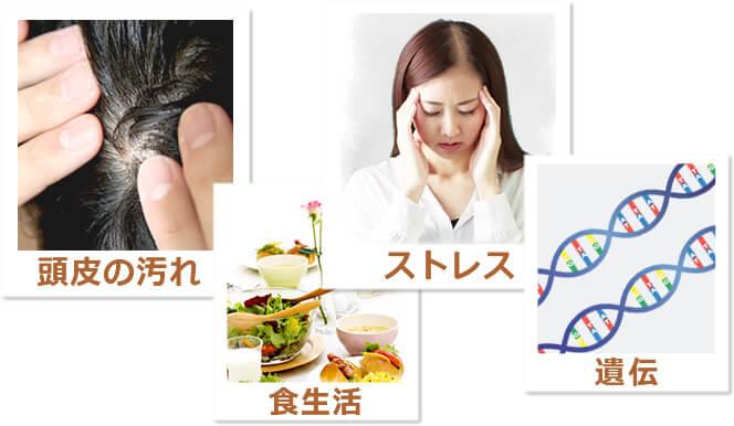 頭皮の汚れ・食生活・ストレス・遺伝